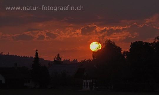Sonnenuntergang Schüpberg, 10.9.2015